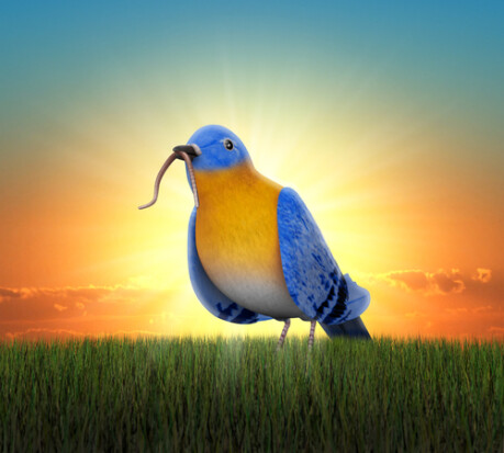 Early Bird Rate Expires in 1 Week