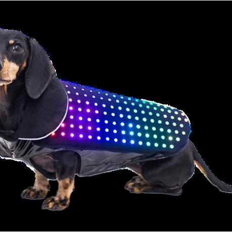 Sci-Fi Fridays: Future Fidos wear LEDs
